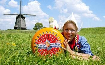 Unsere Käsesorten: Frischer Käse aus Holland