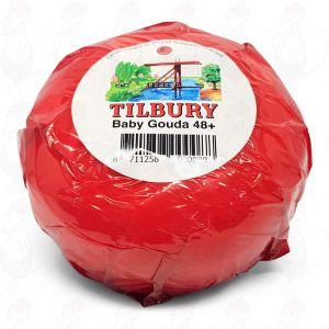 Baby Gouda Käse - 280 Gramm | Premium Qualität