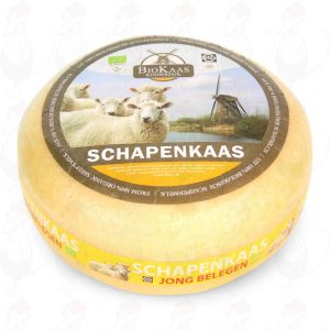 Bio Schafskäse | Ganzer Käse 5,4 kg | Premium Qualität