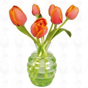 Orange Tulpen Fensteraufkleber - Flat Flower - 30 x 30 cm