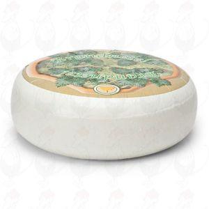 Ziegenkäse Brennessel | Ganzer Käse 4,5 Kilo | Premium Qualität