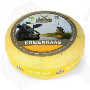 Bio Bockshornkleekäse | Ganzer Käse 5,4 Kilo | Premium Qualität