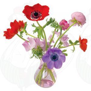 Anemone Fensteraufkleber - Flat Flower - 30 x 30 cm