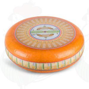 Bröckelkäse - Bröckelgouda  Ganzer Käse 10 Kilo   Premium Qualität