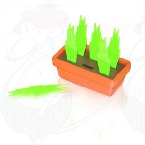 Käse Gras Party Picks | Premium Qualität