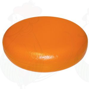 Käsedummy Gouda (Modell) - dunkelgelb - 12 Kg