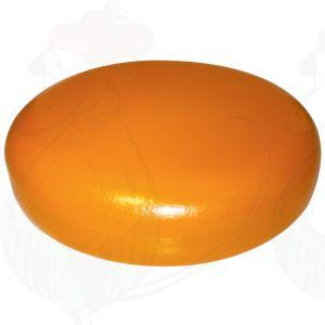 Käsedummy Gouda (Modell) - hellgelb - 16 Kg