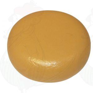 Käsedummy ECO Gouda (Modell) -  4 Kg