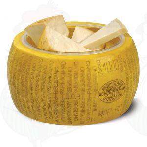 Käsedummy Parmesan Reggiano, mit Schüssel