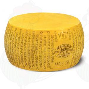 Käsedummy Parmesan Reggiano