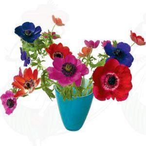 Anemone blau Fensteraufkleber - Flat Flower - 30 x 37 cm